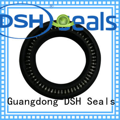 spring spring energised seals design for machine DSH