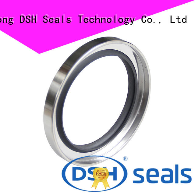 type rotary shaft oil seals typestainless customized for oil industry