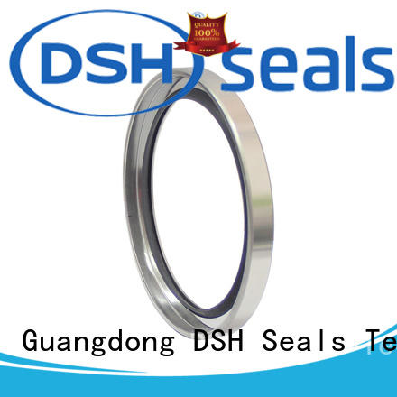 double different types of oil seals manufacturer for hydraulic industry