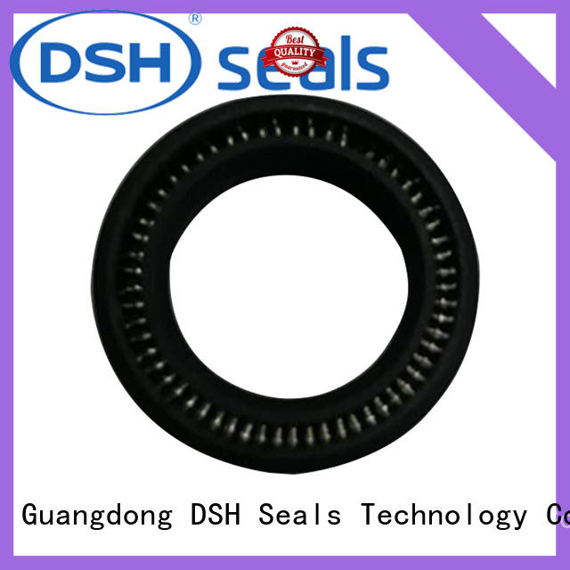 DSH ptacustom spring energized seals supplier for refrigeration equipment