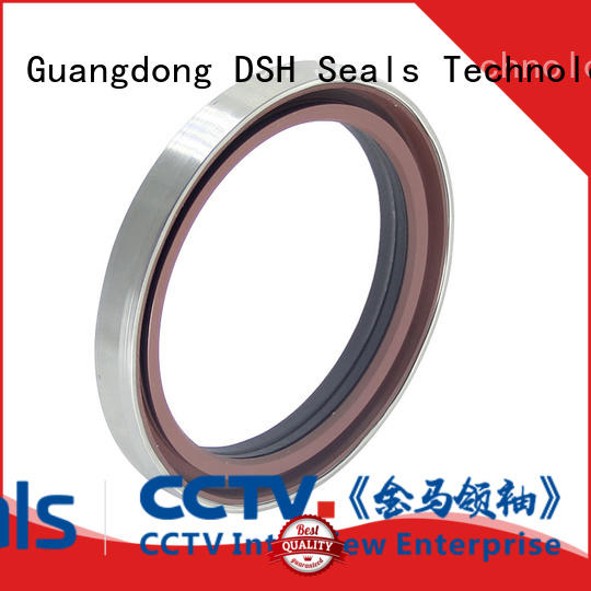 DSH seal oil seals and bearings