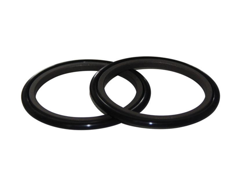 DSH-Rod Wiper Dsi-bronze Filled Ptfe Hydraulic Rod Seal Glyd Ring-1