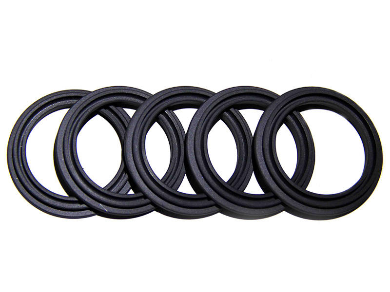 ptwcustom spring energized ptfe seal wholesale for guide ring DSH-3