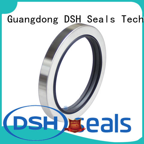 DSH steel bearing oil seal manufacturer for electric equipment