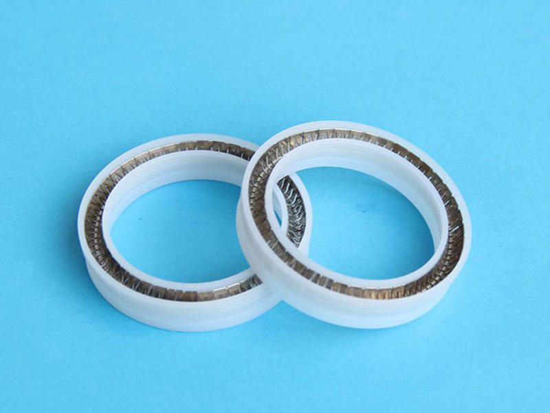 DSH-Manufacturer Of Spring Energized Ptfe Seal Custom Seal-1