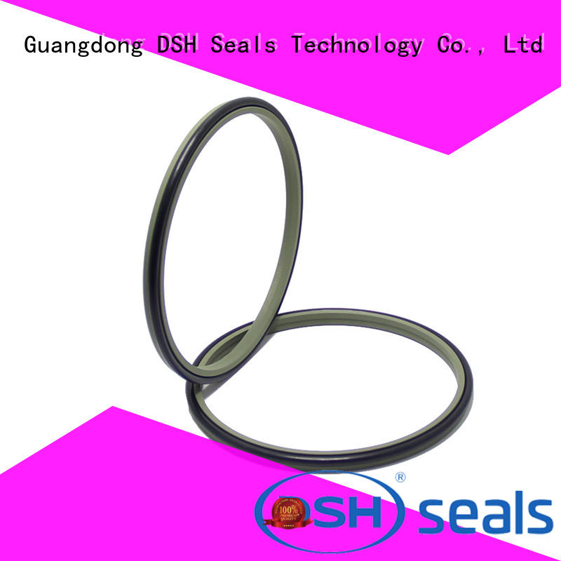 DSH lips wiper ring factory price for coal mining machinery