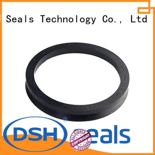 ptfe shaft oil seal rotary for pneumatic industry DSH