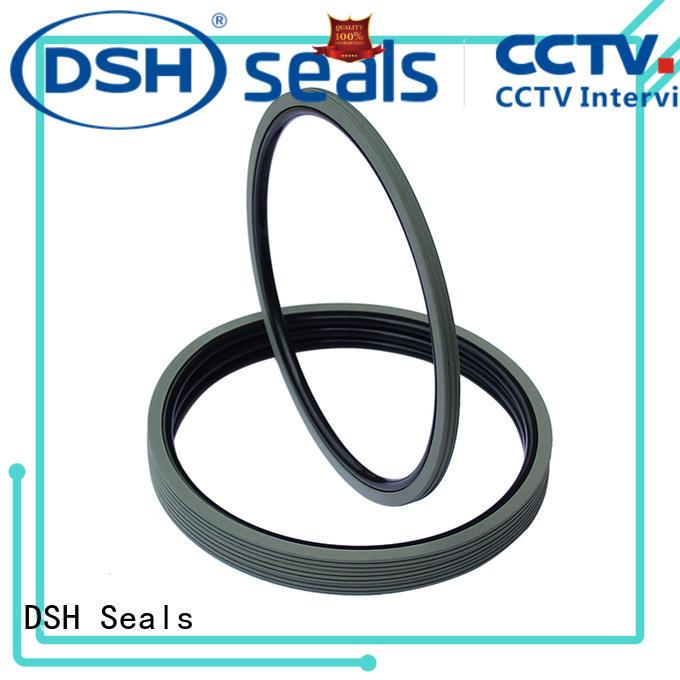 DSH ptfe rotary seals dns