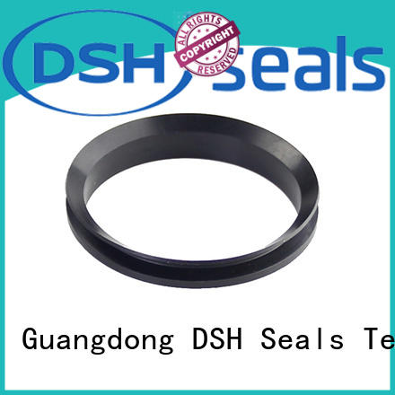 dvs rotary shaft seal catalog from China for guide ring DSH