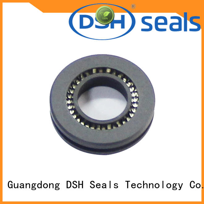 shaft oil seal ptfe design for guide ring