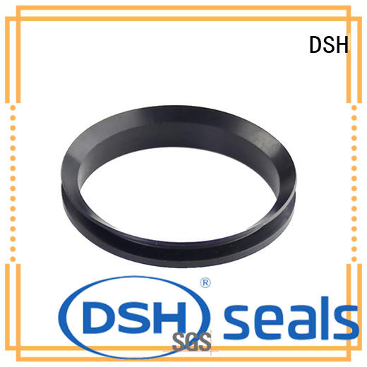 DSH rotary high pressure rotary seal supplier for refrigeration equipment
