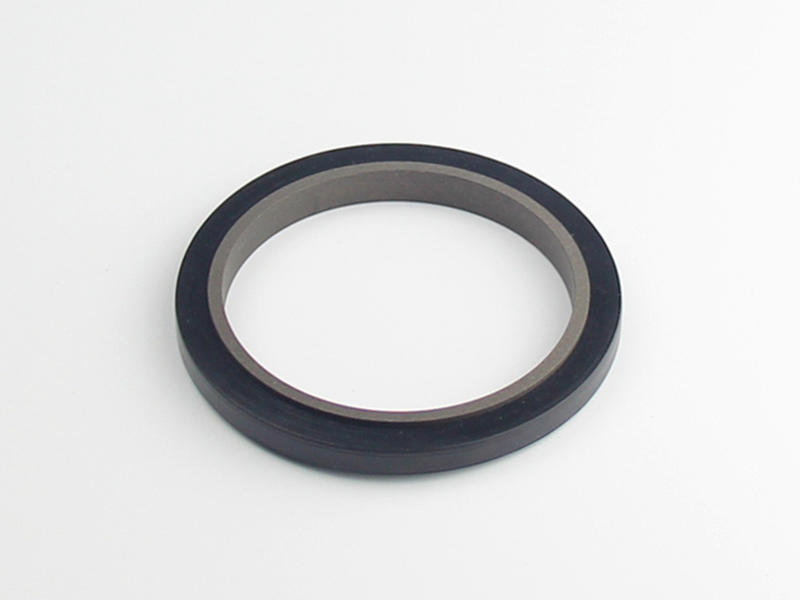 DSH-Professional Rod Seal Cylinder Rod Wiper Supplier-2