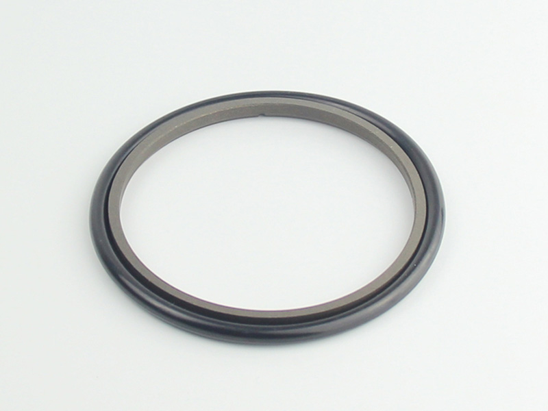 DSH-High-quality Ptfe Rod Seal | Hbts - High Speed Hydraulic Rod Seal-2