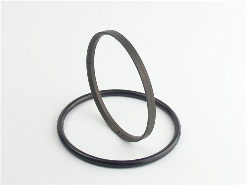 DSH-High-quality Ptfe Rod Seal | Hbts - High Speed Hydraulic Rod Seal-4