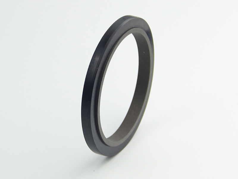 DSH-Professional Rod Seal Cylinder Rod Wiper Supplier-1