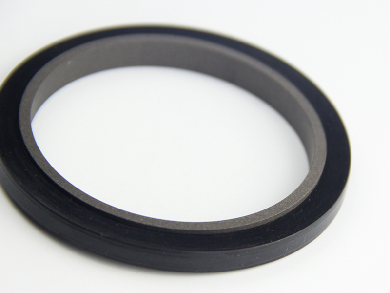 DSH-Professional Rod Seal Cylinder Rod Wiper Supplier-4
