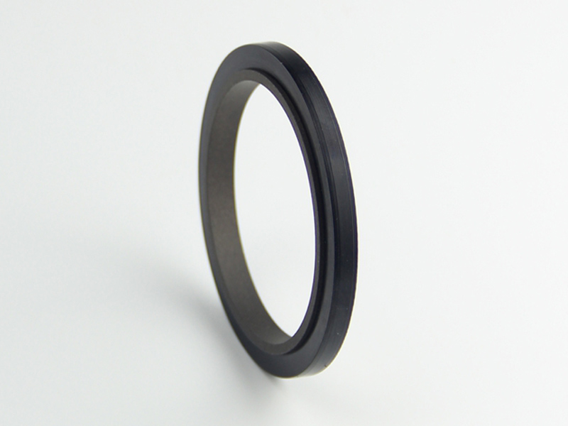 DSH-Professional Rod Seal Cylinder Rod Wiper Supplier-6