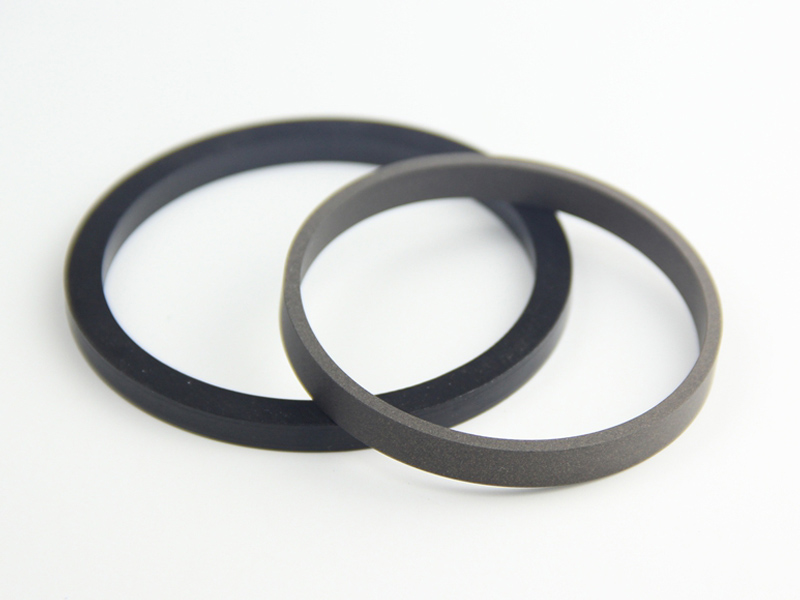 DSH-Professional Rod Seal Cylinder Rod Wiper Supplier-7