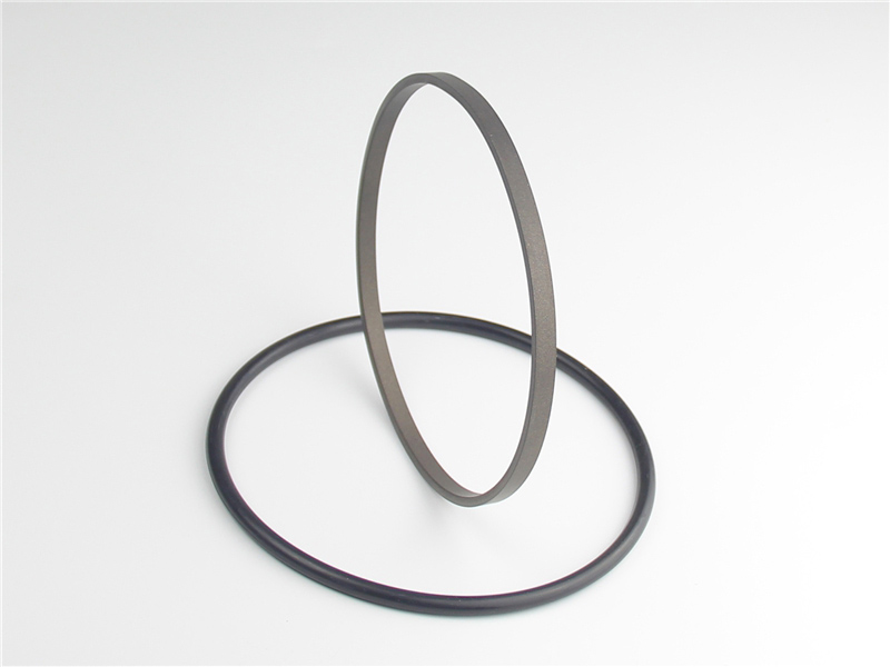 DSH-High-quality Rod Seal | Spno-bronze Filled Ptfe Hydraulic Rod Seals-2