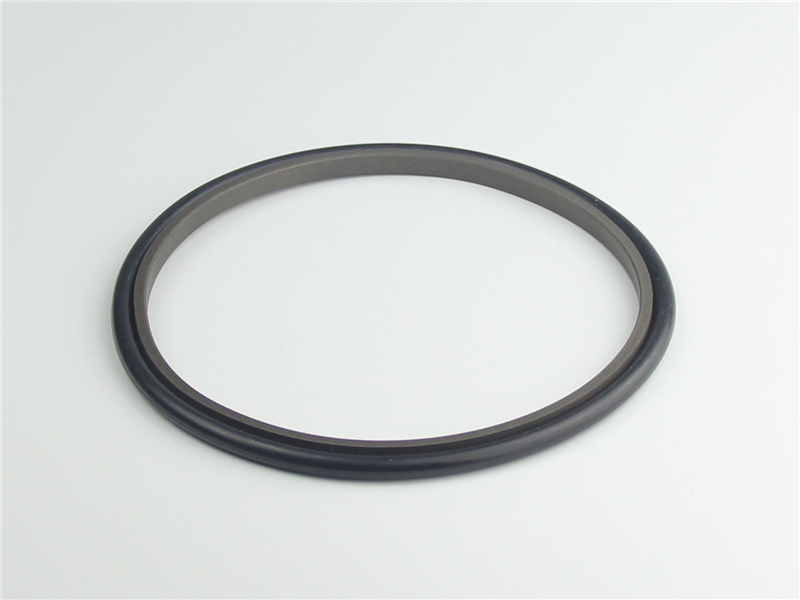 DSH-High-quality Rod Seal | Spno-bronze Filled Ptfe Hydraulic Rod Seals-3