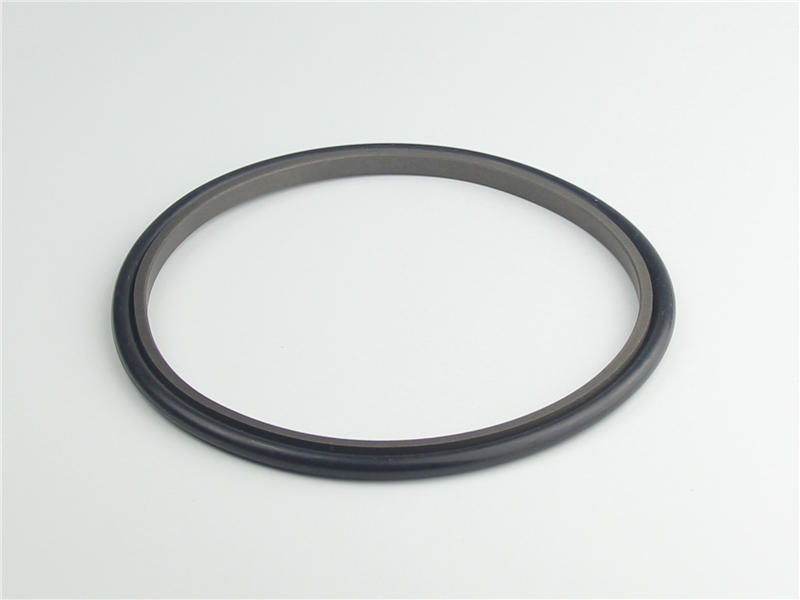 compact rod seal kit manufacturer for electric equipment DSH
