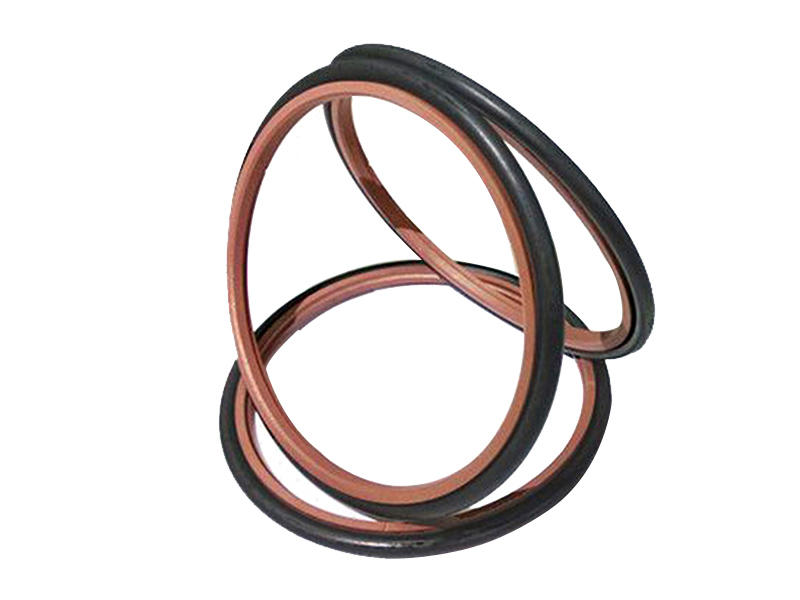 double rod wiper seals manufacturer for chemical equipment