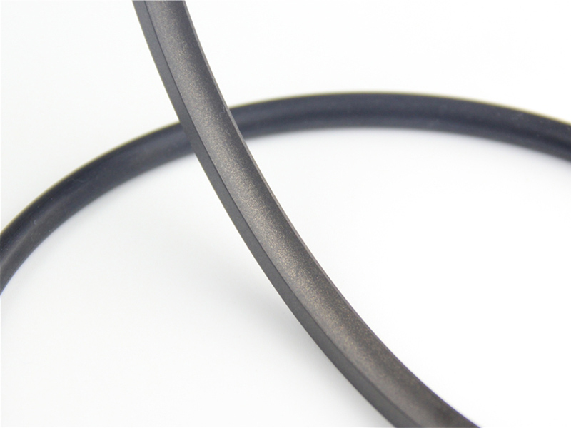 DSH-Find Shaft Oil Seal High Pressure Rotary Seal From Dsh Seals-5
