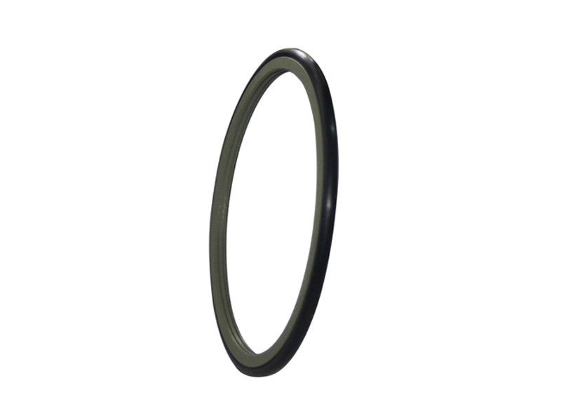 DSH-Best Rotary Seal Drs - Ptfe Rod Rotary Shaft Glyd Rings