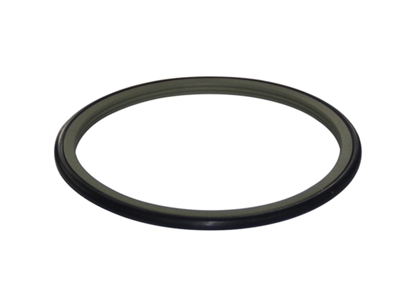 DSH-Best Rotary Seal Drs - Ptfe Rod Rotary Shaft Glyd Rings-1