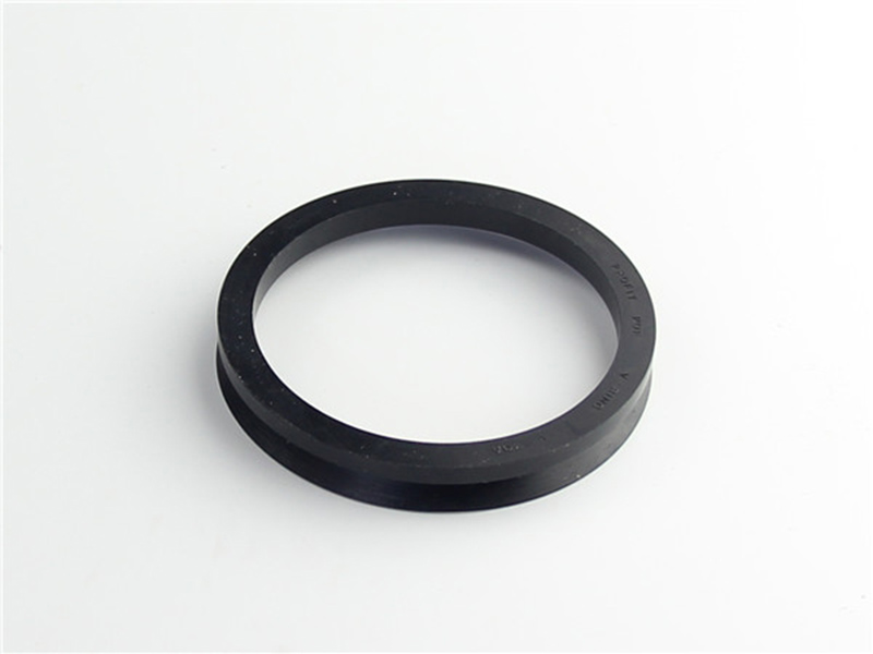 DSH-Professional Shaft Oil Seal Rotary Shaft Seal Catalog Supplier