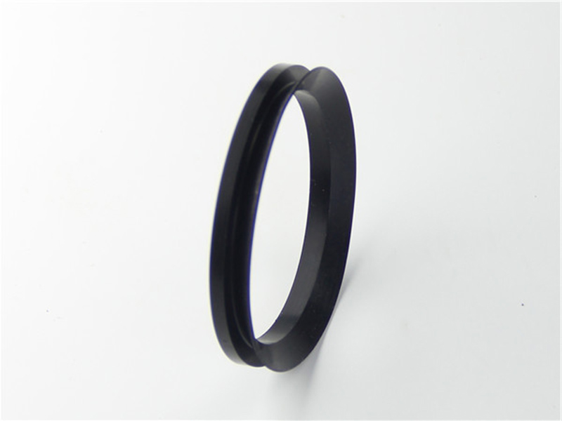DSH-Professional Shaft Oil Seal Rotary Shaft Seal Catalog Supplier-3