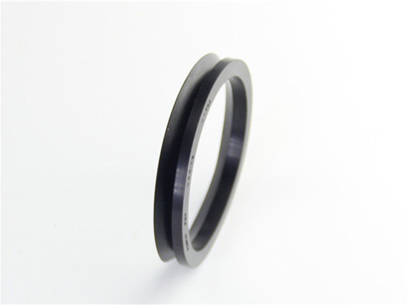 DSH-Professional Shaft Oil Seal Rotary Shaft Seal Catalog Supplier-4