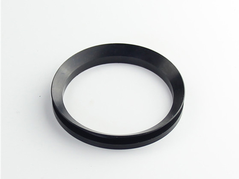 DSH-Professional Shaft Oil Seal Rotary Shaft Seal Catalog Supplier-5