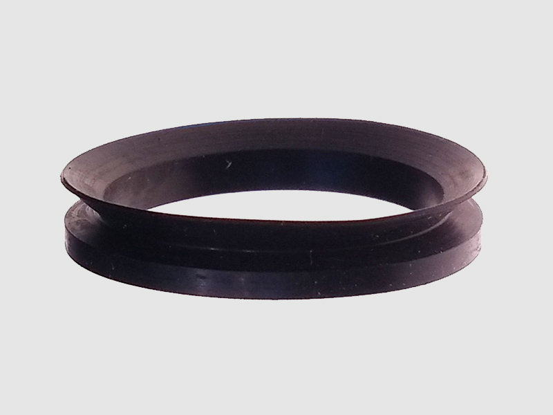 DSH-Professional Shaft Oil Seal Rotary Shaft Seal Catalog Supplier-6