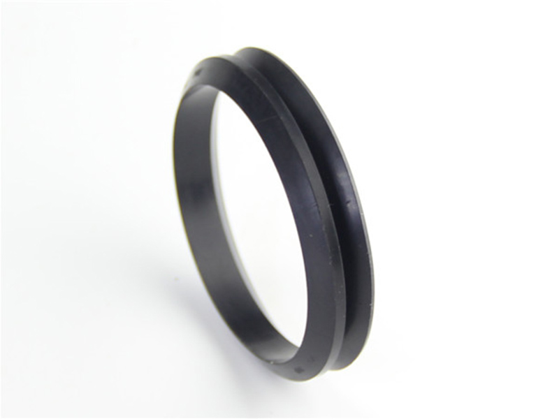 DSH-Rotary Shaft Seal Dvs - Rotary Rubber Seal V Ring-5