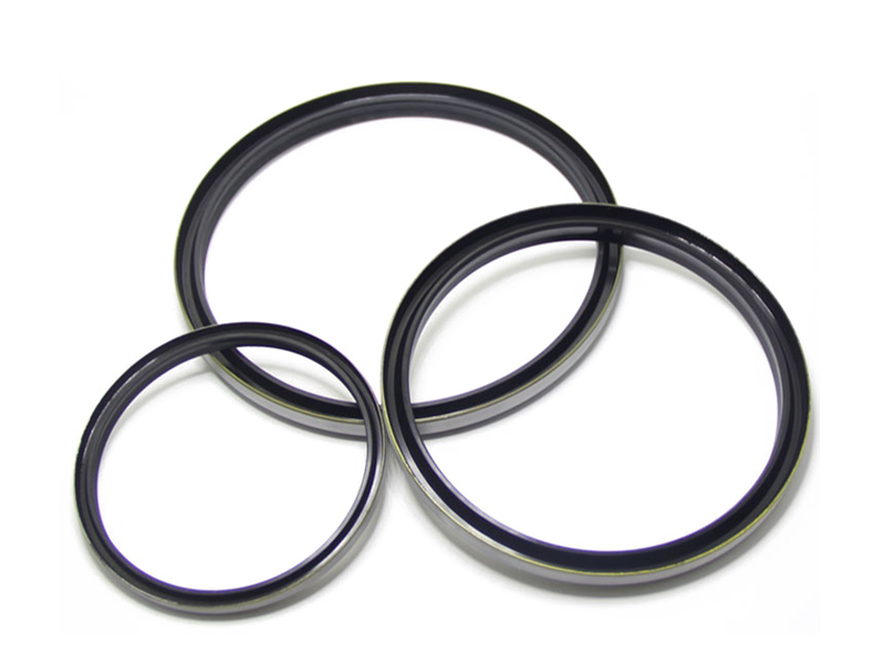 DSH-Wiper Ring Manufacture | Excavator Hydraulic Cylinder Wiper Seal-1