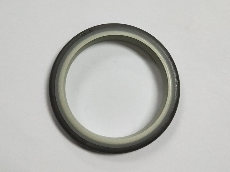 DSH-High-quality Wiper Seals | Dkbi - Hydraulic Cylinder Dust Oil Seal