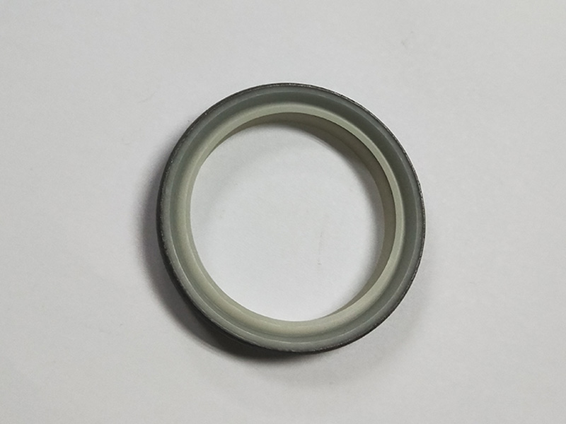 DSH-High-quality Wiper Seals | Dkbi - Hydraulic Cylinder Dust Oil Seal-1