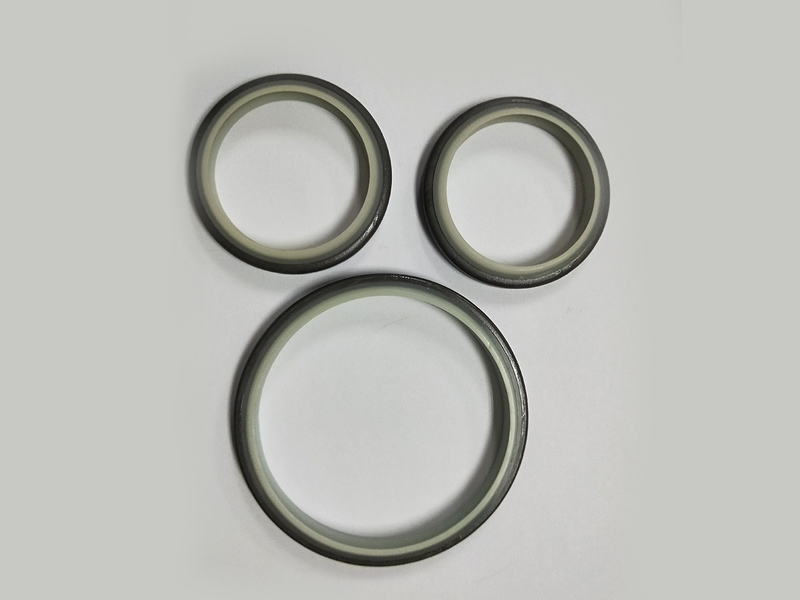 DSH-High-quality Wiper Seals | Dkbi - Hydraulic Cylinder Dust Oil Seal-2
