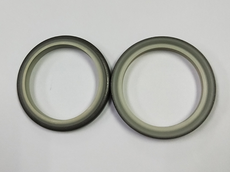 DSH-High-quality Wiper Seals | Dkbi - Hydraulic Cylinder Dust Oil Seal-3
