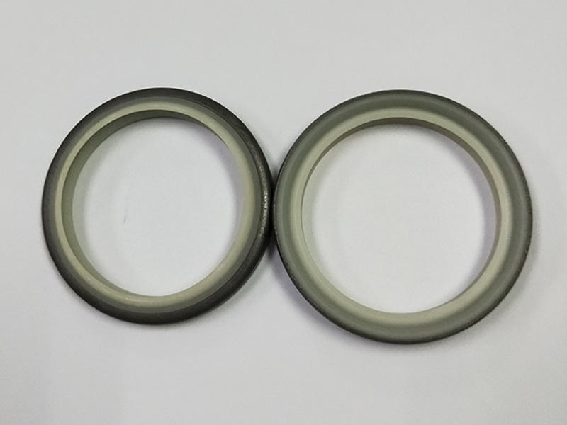 DSH double hydraulic wiper seal customized for excavator