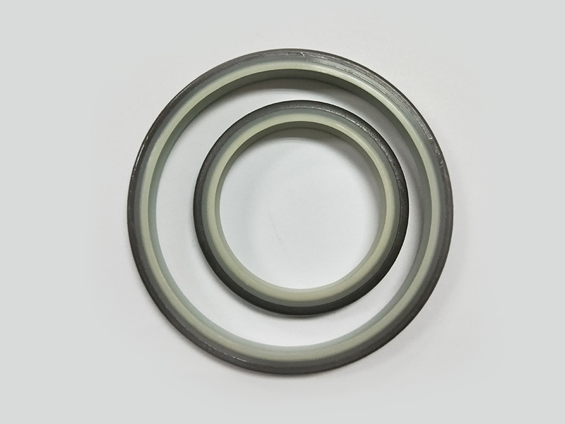 DSH-High-quality Wiper Seals | Dkbi - Hydraulic Cylinder Dust Oil Seal-4