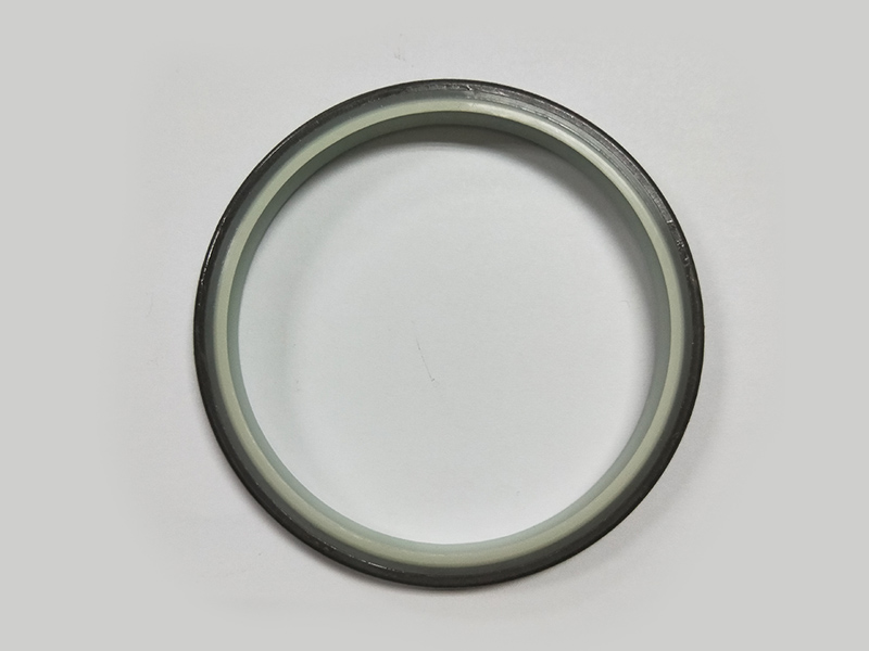 DSH-High-quality Wiper Seals | Dkbi - Hydraulic Cylinder Dust Oil Seal-5