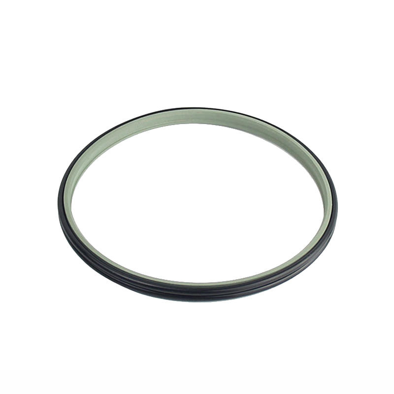 DPE - Hydraulic PTFE Double Wiper Dust Seals