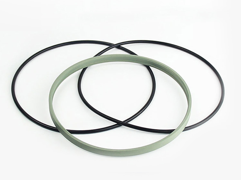DSH-Best Wiper Seals Dpe - Hydraulic Ptfe Double Wiper Dust Seals-4