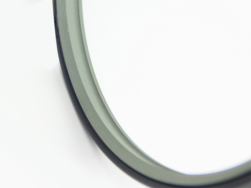 DSH-Best Wiper Seals Dpe - Hydraulic Ptfe Double Wiper Dust Seals