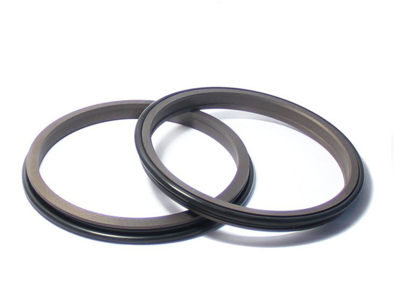 DSH-Find Wiper Seal Dpr-cylinder Wiper Ring Dustproof Scraper Seal