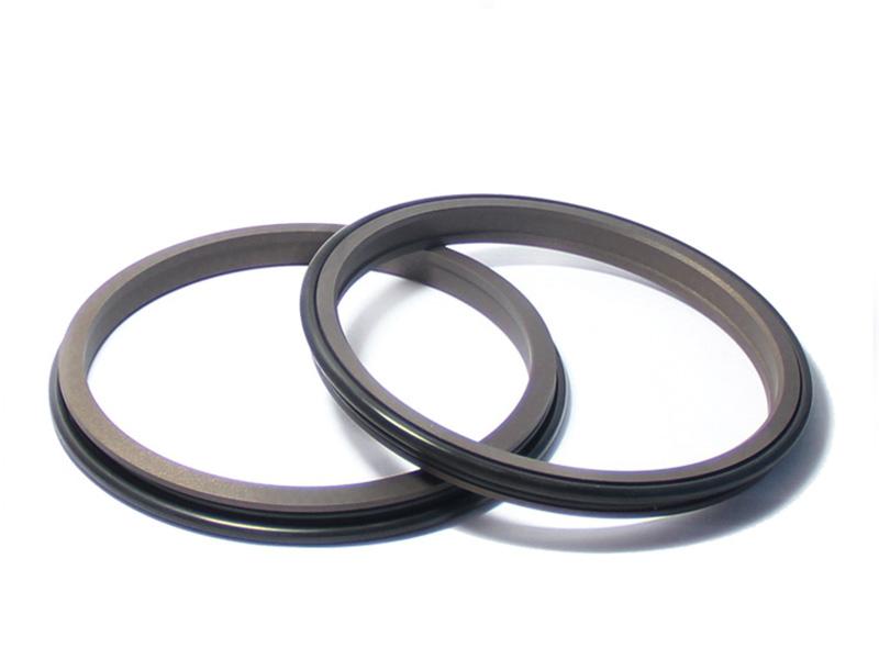 DSH-Find Wiper Seal Dpr-cylinder Wiper Ring Dustproof Scraper Seal