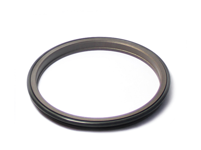 DSH-Find Wiper Seal Dpr-cylinder Wiper Ring Dustproof Scraper Seal-5