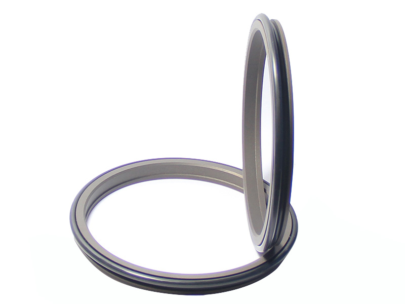 DSH-Find Wiper Seal Dpr-cylinder Wiper Ring Dustproof Scraper Seal-1